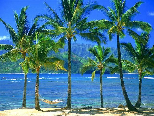 paisajes-del-mundo-marino-809354