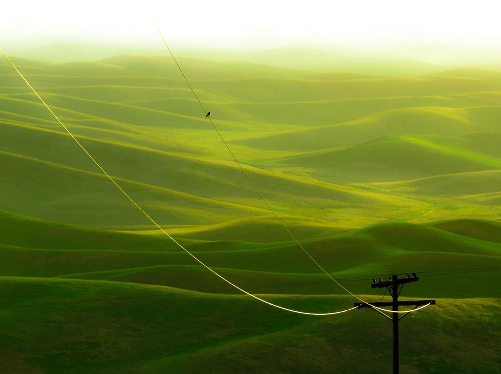 montes verdeando