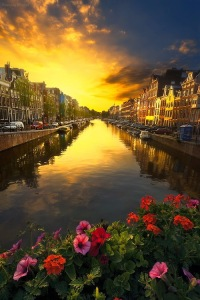 A Timeless Moment - Amsterdam, The Netherland by Romain Mattei