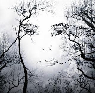 aRBOLES sin hojas detras el rostro de una mujer
