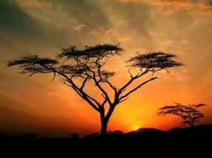 paisajes-del-mundo