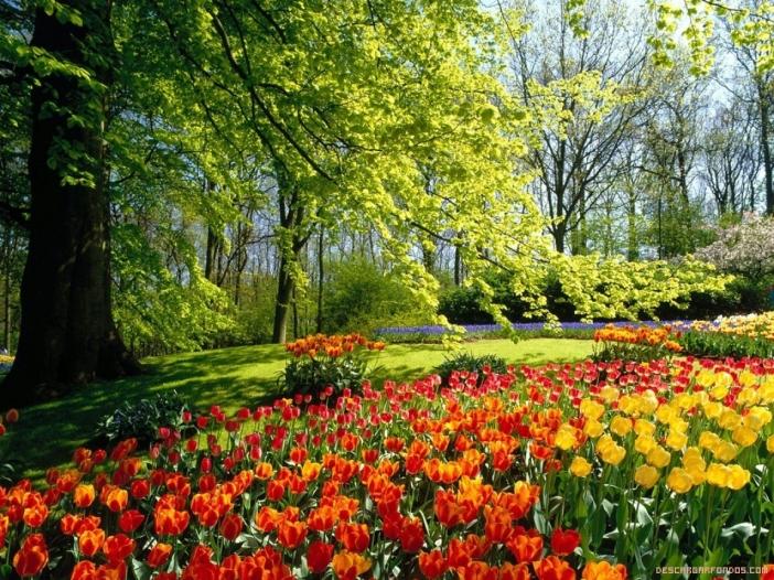 paisaje-primaveral.jpg
