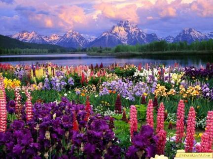 paisaje primaveral.jpg